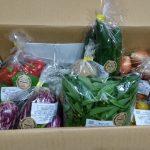無肥料無農薬野菜❗